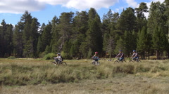 Family cycling past lake, Big Bear, California, panning shot Stock Footage