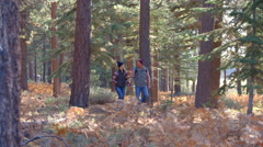Panning shot of couple walking holding hands on forest trail Stock Footage