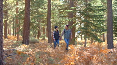 Panning shot of couple walking on a sunlit forest trail Stock Footage