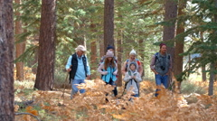 Panning shot of multi generation family walking in a forest Stock Footage