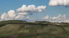 Homeland   Wineyard, Wind Turbine and Clouds - II - stock footage