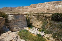 Tourists to the pool is Agar source in the Negev desert in Israel - stock photo
