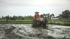 Farmer ploughing wet rice field near Ubud, Bali Stock Footage