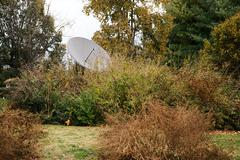 Partially obscured satellite dish - stock photo