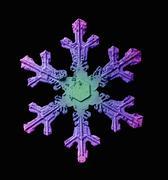 EM of snowflake - stock photo