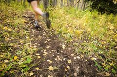 Male trail runner on the Beaver Ponds Trail in Gunnison National Forest, Banff Stock Photos