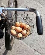 basket with many fresh eggs hen delivered with an old rusty bicycle - stock photo