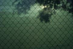Green screen on wire fence Kuvituskuvat
