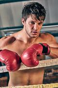 Man training gym boxing mma ring shadow boxing mixed martial arts fitness on  Stock Photos