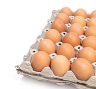 organic eggs and empty slot prepare for food - stock photo