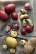 Potatoes, shallots and onions, still life Stock Photos