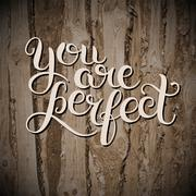 You are perfect hand lettering inscription inspirational and mot Stock Illustration
