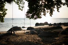 Swings on a beach, Tioman Island, Malaysia - stock photo