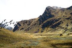 High pass (4350m) in the Urubamba mountain range, Peru - stock photo