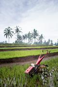 Cultivator used for ploughing paddy fields near Ubud, Bali, Indonesia Stock Photos