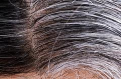 Going gray. Woman gray and black hair roots Stock Photos
