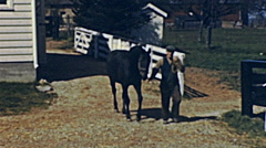 USA 1948: man with a horse in a farm - stock footage
