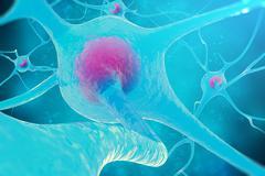 Neural network, brain cells, nervous system. 3d illustration Stock Illustration