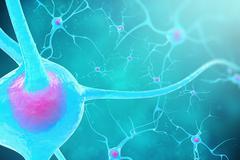 Neurons in the brain on blue background. 3d illustration Stock Illustration