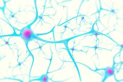 Neurons in the brain on white background with focus effect. 3d illustration Stock Illustration