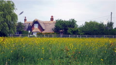 Traditional English thatched cottage rural scene - stock footage