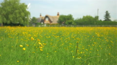 Rural England - stock footage