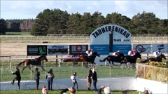 Spectators celebrate win at horse track. Stock Footage
