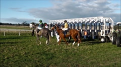 Race horses circle at starting gate. Stock Footage