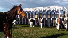 Race horses entering starting gate. Stock Footage