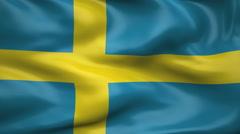 Flag of Sweden Stock Footage