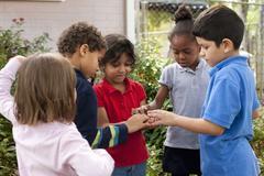 Children observing grasshopper in garden Stock Photos