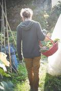 Young man with basket of homegrown vegetables Stock Photos