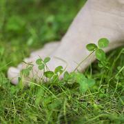Bare foot in grass Kuvituskuvat