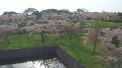 Hakodate Goryokaku park aerial shoot Stock Footage