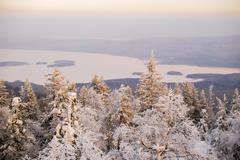 View of snow covered tree tops and distant lake, Nizhniy Tagil, Sverdlovsk Stock Photos