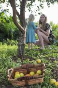 Female toddler handing freshly picked orange to mother in garden Stock Photos