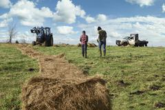 Mature farmer and son with unrolled hay stack in dairy farm field - stock photo