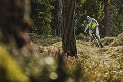Young male mountain biker cycling downhill in forest - stock photo