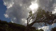 Clouds move over a hill and wind blown tree, filmed in time lapse Stock Footage