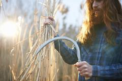 Man harvesting wheat with scythe - stock photo