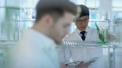 4K Portrait of smiling research scientists studying plant life in laboratory. Stock Footage