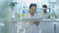 4K Portrait of smiling research scientist studying plant life in laboratory - stock footage