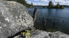 Mountain Lake. Forest in the water. View from the rocky coast Stock Footage
