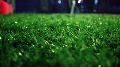 Green grass. Closeup. Lawn close up. Grass background. Green grass soccer field - stock footage