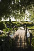 Weeping willow and wooden footbridge over lily pond in garden at sunset - stock photo