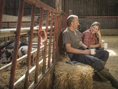 Farming couple taking a break in barn Kuvituskuvat