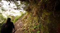 Pathway to Wayna Picchu Stock Footage