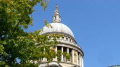 The dome of St Paul's Cathedral, London, UK with tree Stock Footage