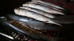 Turning seven raw fish grilled on campfire in the evening Stock Footage