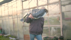 Farmer Picking Up Seedling Tray In Greenhouse Stock Footage